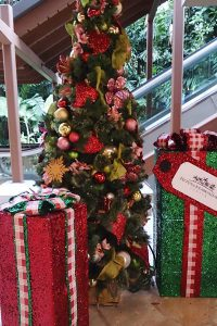 クリスマス,ハワイ